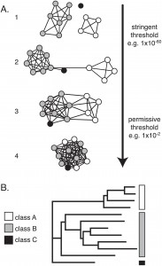 A network representation  (A) vs. a tree representation (B) of protein sequence similarities. Click for larger picture & caption.